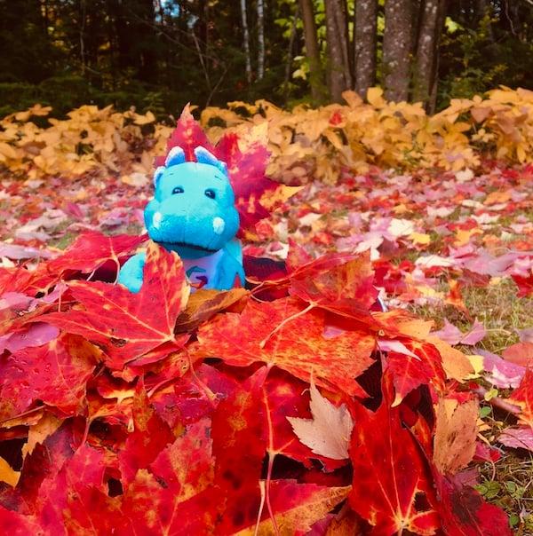 Autumn Scorch